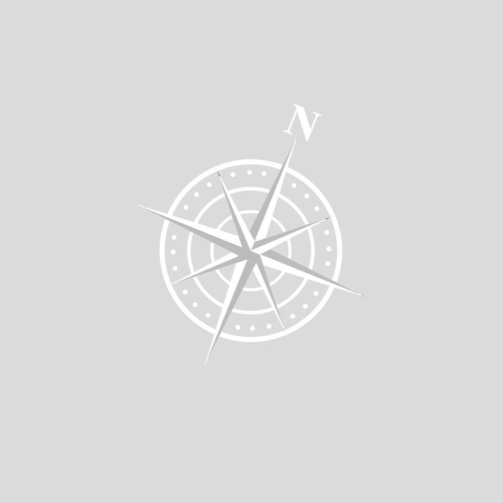 AB-NS COMPASS-GREY.jpg