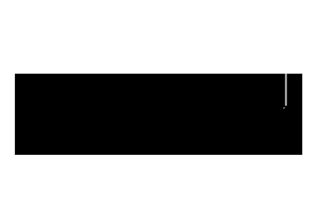 La botella logo design by Evan McIntyre