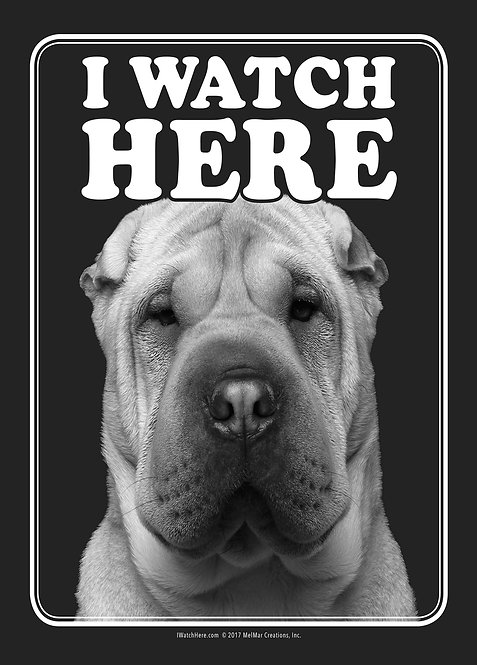 Chinese Sharpei (BW)