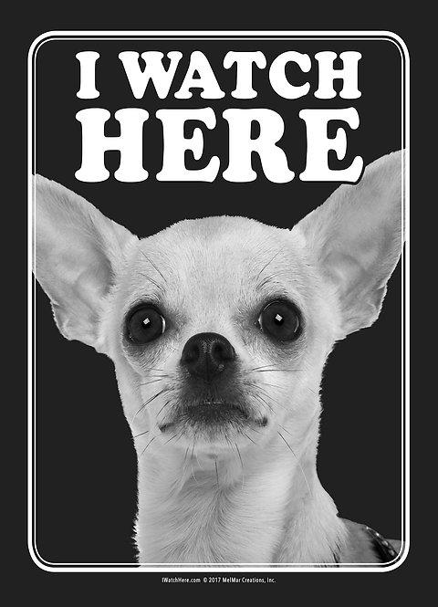 Chihuahua (BW)