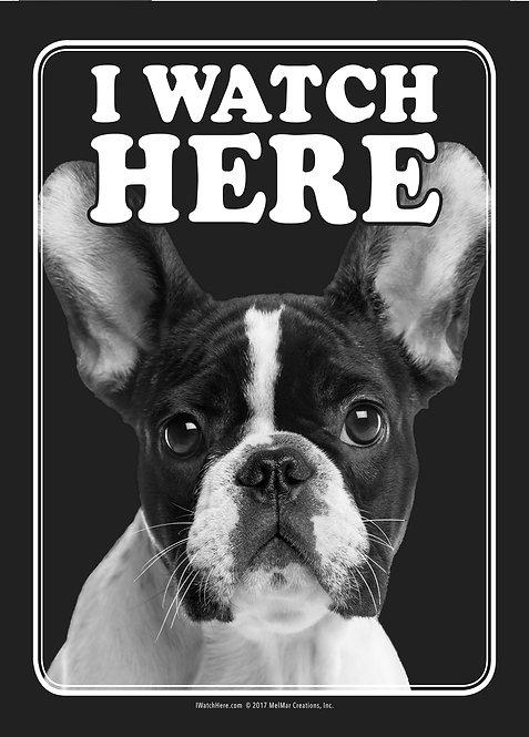 French Bulldog (BW)