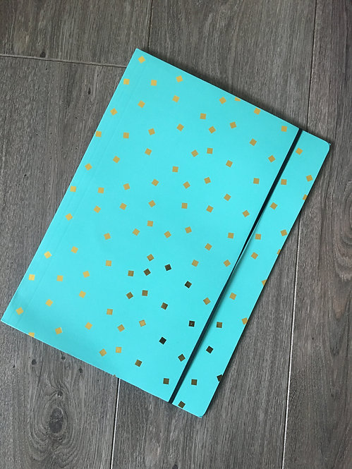 Turquoise and Gold 'Hints of Gold' File Folder