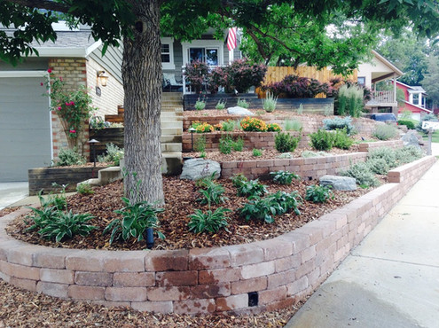 Hardscape and Plantings