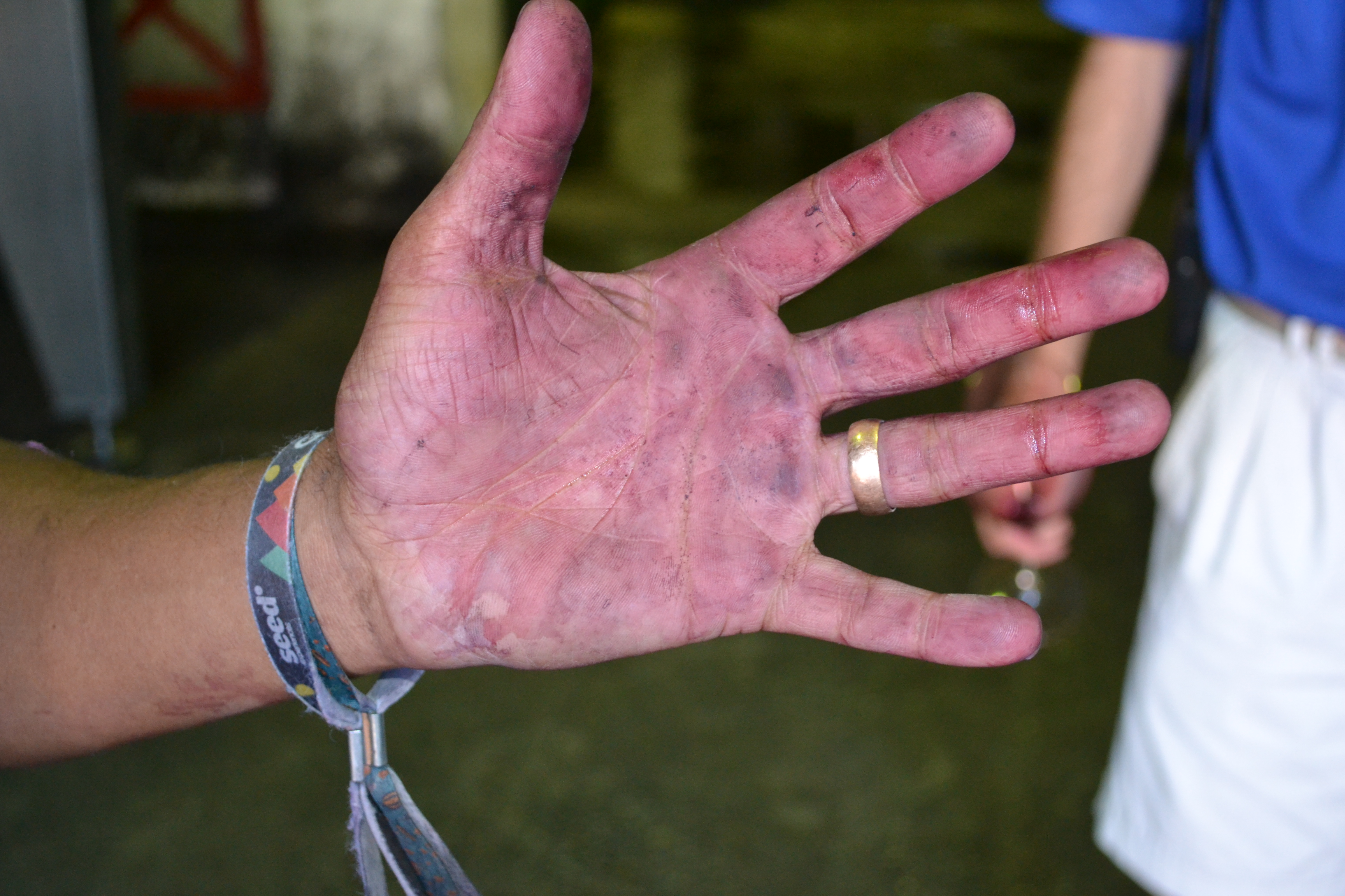Cloof wines - Winemakers Hands