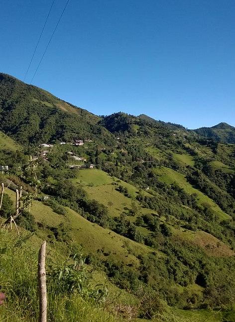 yunguilla.png