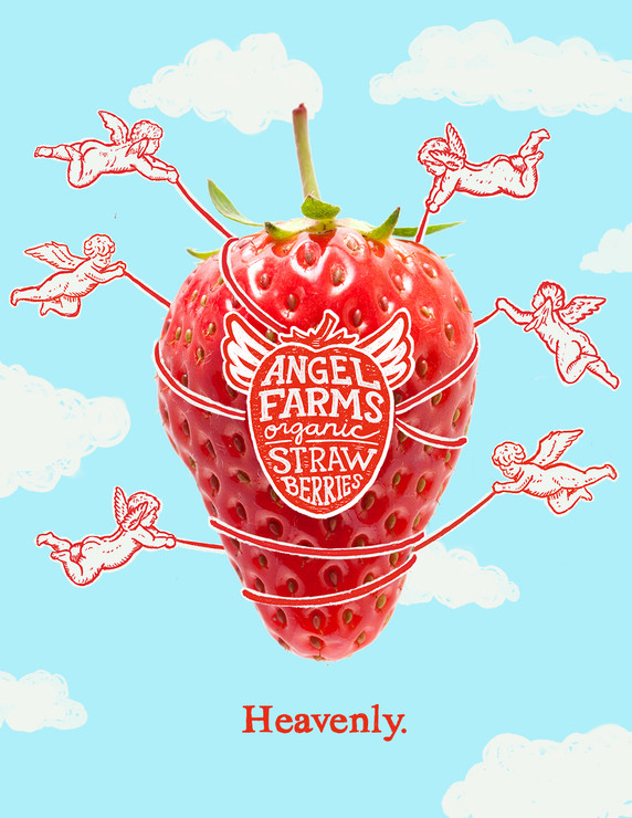 Angel Farms Branding Ad 1.jpg