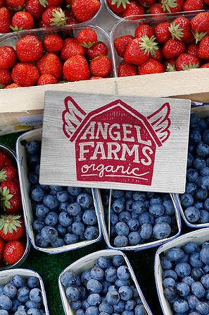 angel-farms-group-shot.jpg