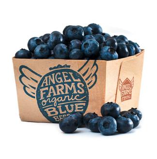 blueberry-packaging.jpg