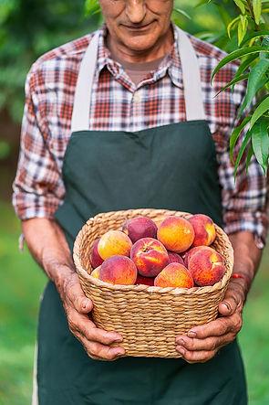 peach lifestyle.jpg