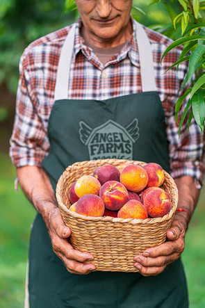 peach lifestyle copy.jpg