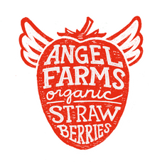 Angel_Farms-logo-white-outline.png