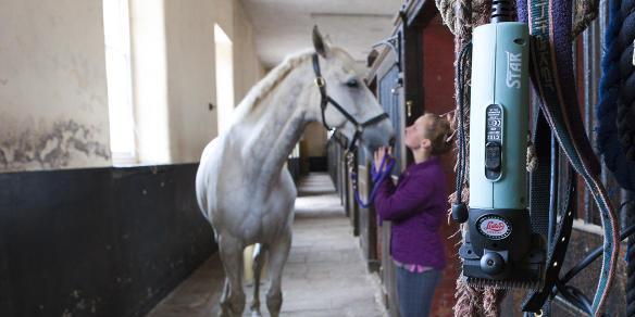 Tondeuses pour chevaux prima