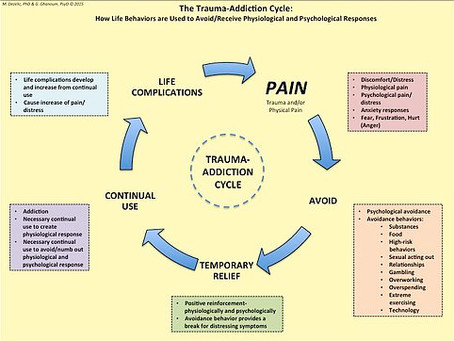 THE TRAUMA-ADDICTION CYCLE