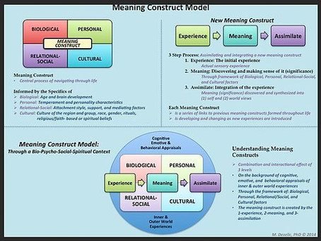 MEANING CONSTRUCT MODEl