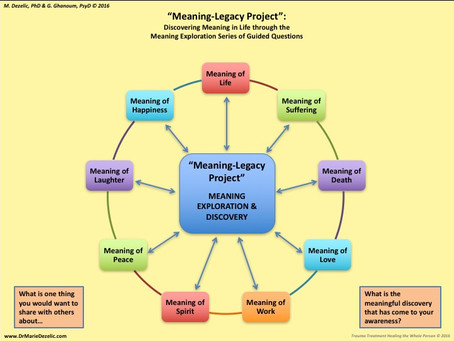 Meaning Legacy Project - Meaning Exploration Topics