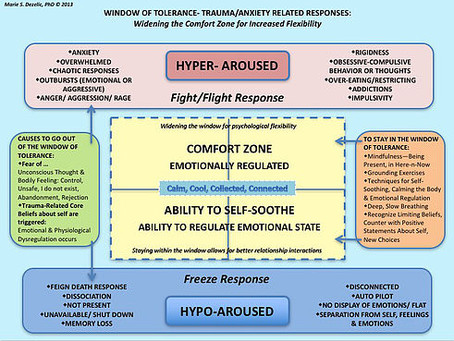 WINDOW OF TOLERANCE- TRAUMA/ANXIETY RELATED RESPONSES