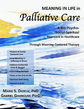 Meaning in Life in Palliative Care