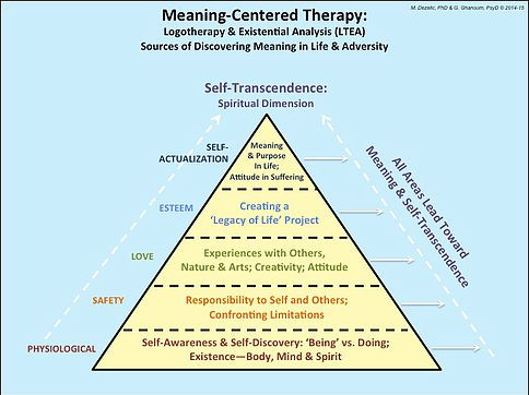 THE MEANING-ACTION TRIANGLE, Dr Marie Dezelic