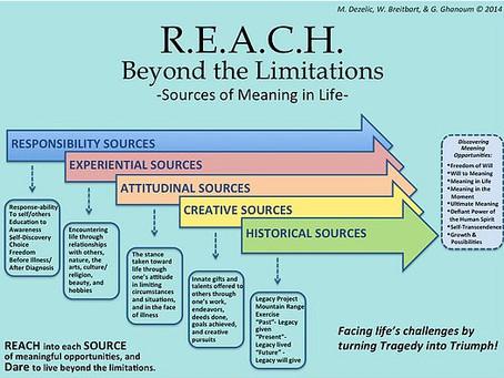 REACH Model: REACH Beyond the Limitations