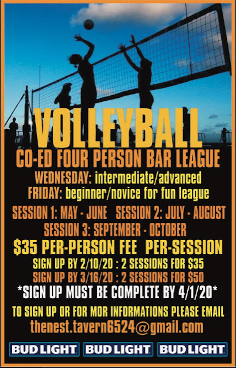 volleyball poster.jpg