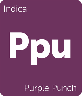 punch leafly