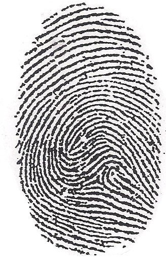 Black Fingerprint 104
