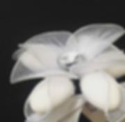 Screenshot 2020-01-13 at 11.17.43 AM.png