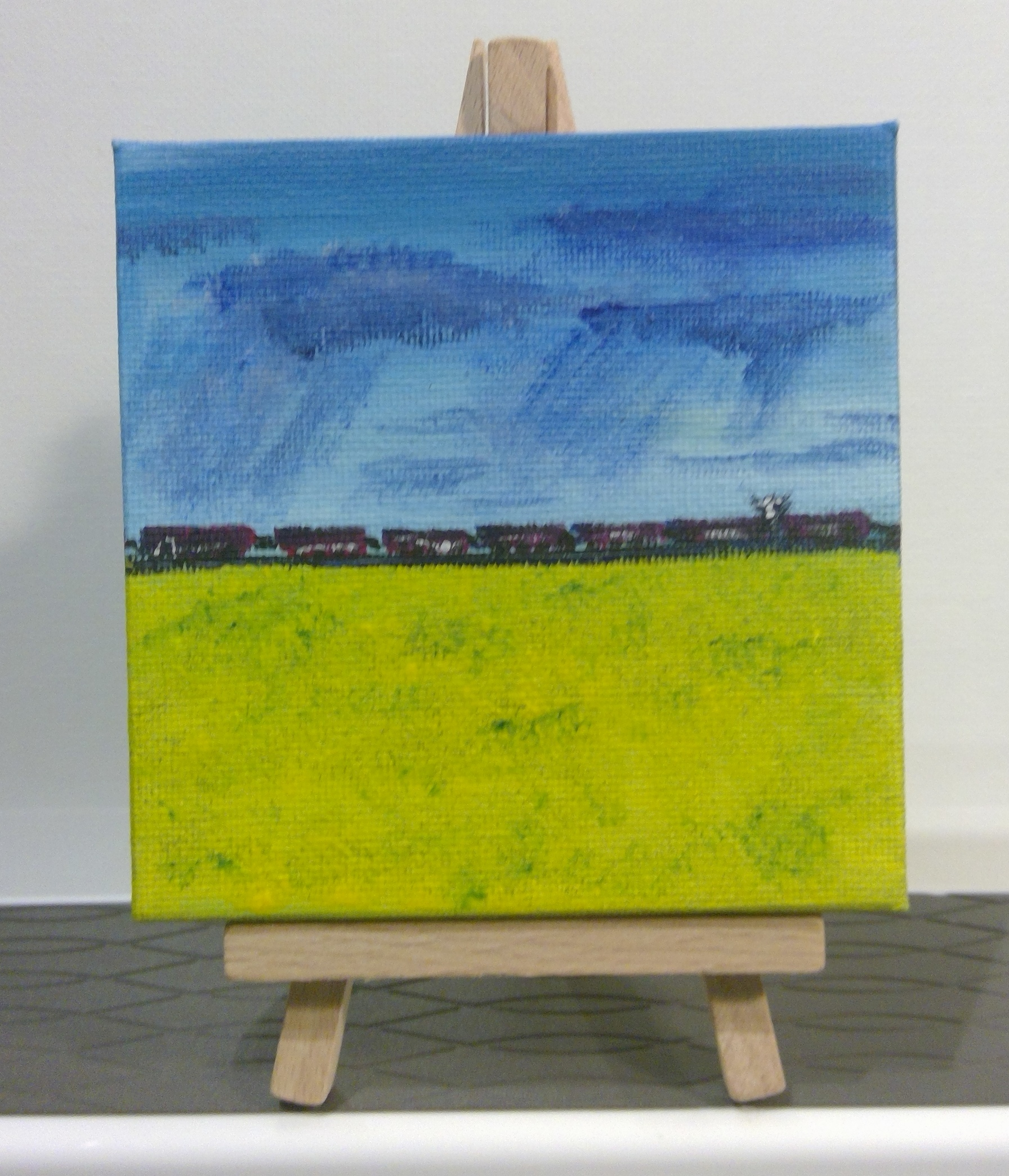Canola Field   sold