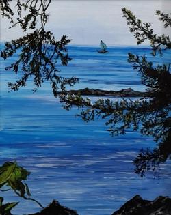 Arbutus Cove