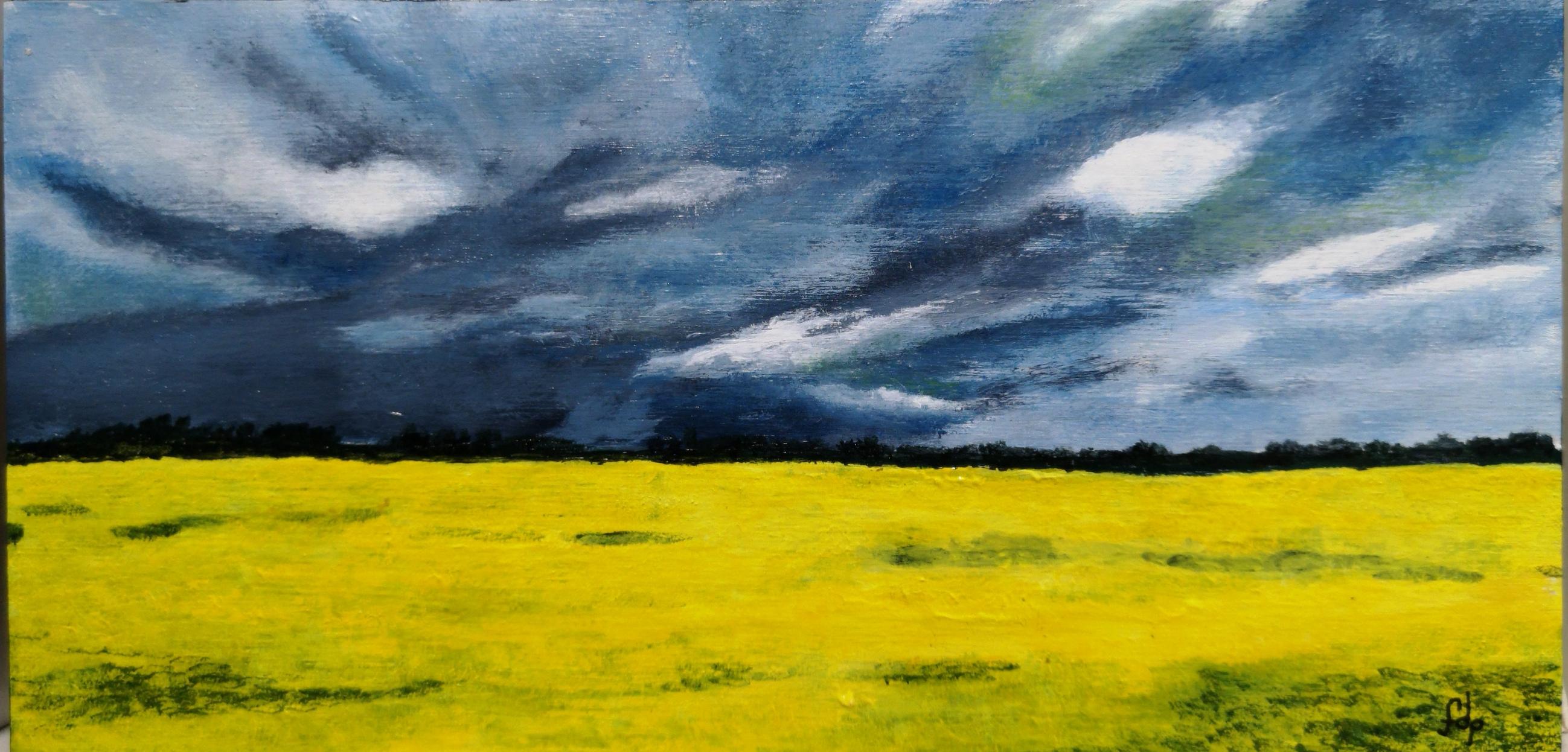 Prairie Storm  $70