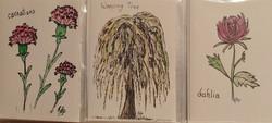 Weeping tree, Carnations, Dahlia $2
