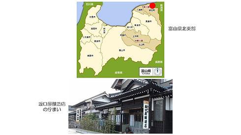 20200417 Sakaguchiya.jpg