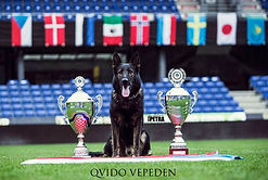 2018 - QVIDO VPEDEN WUSV WORLD CHAMPION