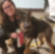 Radar 11 mo - Farm Dog Certification - J