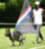 KUBA 3.jpg