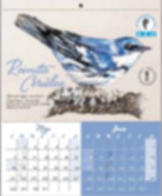 Lynne Brazilian Calendar.JPG