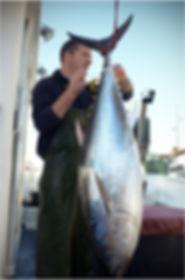 Renaud Fréjafond, thon rouge de méditerranée