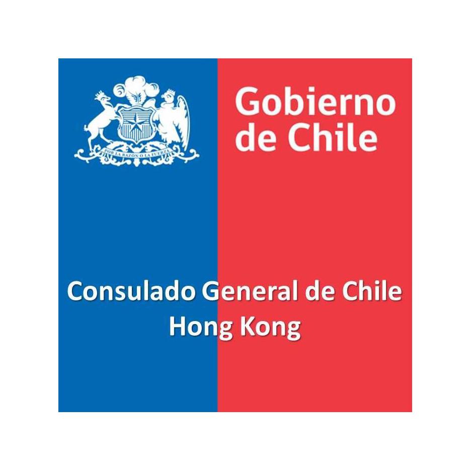 gobierno chile2