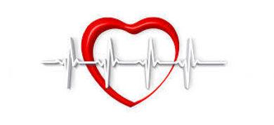 Cardio-vasculaire.jpeg