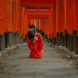 Sakura-Dream-by-Chris-Rudz-1-.jpg