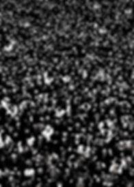 100BinKisiydiler_IHVM_1.jpg