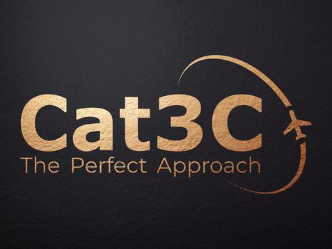 Cat3C.png