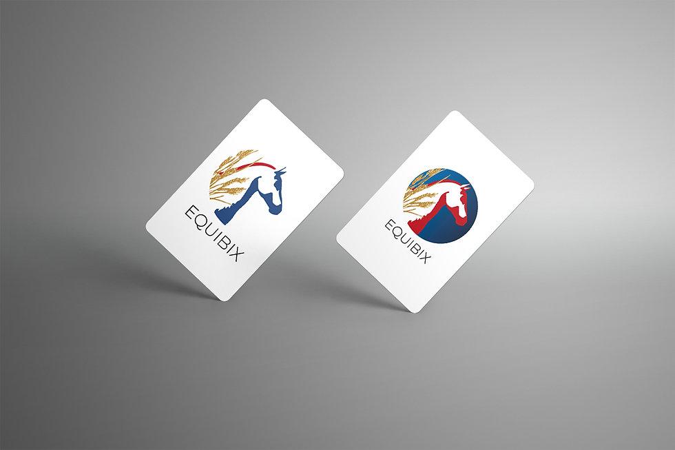 Colossals Equibix branding portfolio