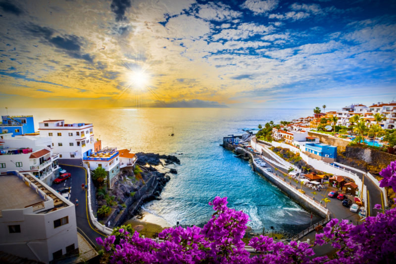 canary islands commercial sales agents