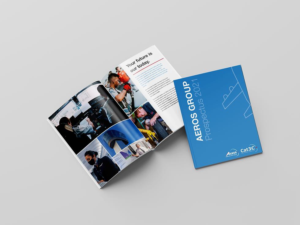 design portfolio by colossal