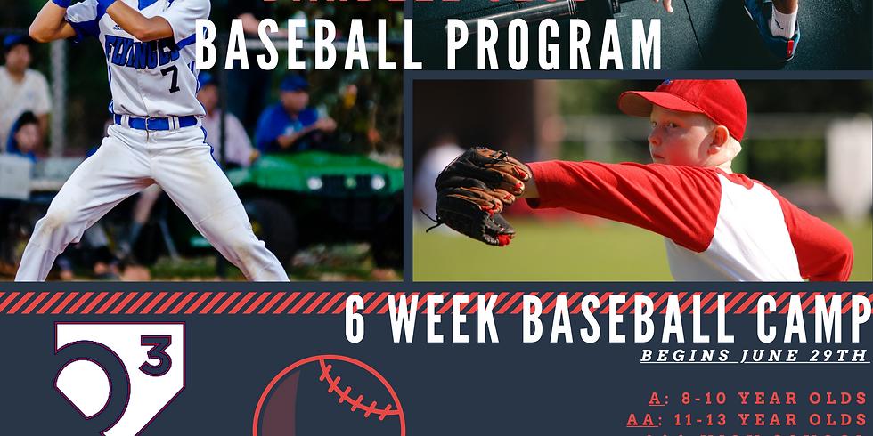 Summer Baseball Program