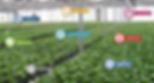 Smart farms