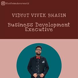 Vidyut Vivek Bhasin