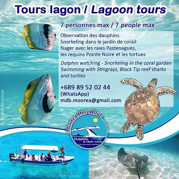 Snorkeling Moorea Tour Lagon
