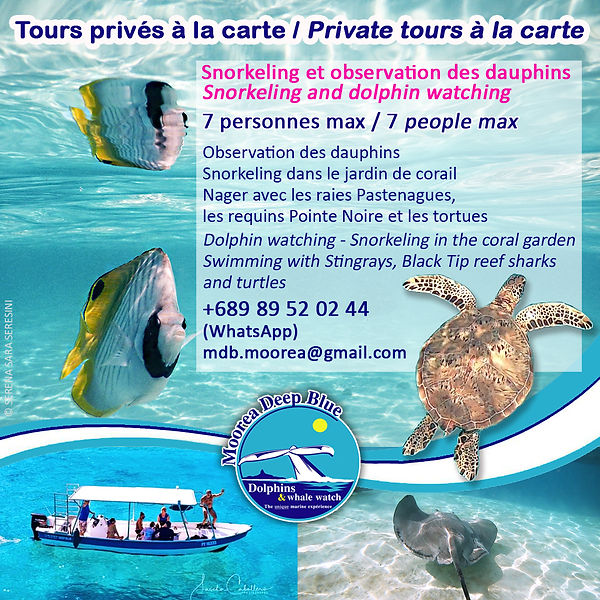 20201125 Tours Lagon.jpg